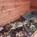 La magie du compostage en vidéo !